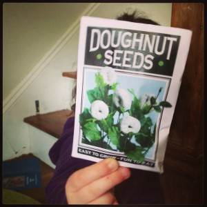 Doughnut Seeds April Fools